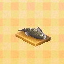 fish on a board