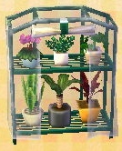 greenhouse box