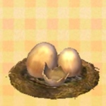 Wyvern eggs