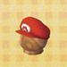 big bro's hat